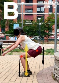 flexion de tronco carga en caderas