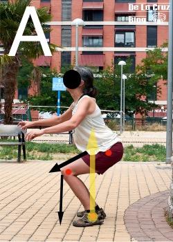 extension de tronco carga en rodillas